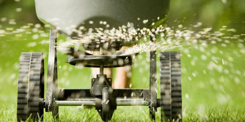 lawn seeding Belington, WV